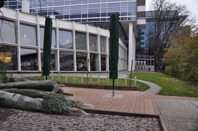 Одна из территорий, на которой можно разместить мини-отель.Rosengartenplatz. Фото: www.raumlabor.net