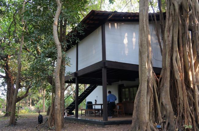 Дом Studio Mumbai © Francesca Molteni