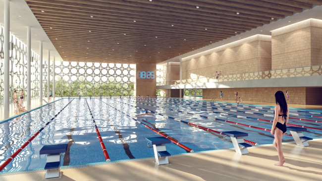 Проект реконструкции бассейна «Лужники» © UNK prjoect