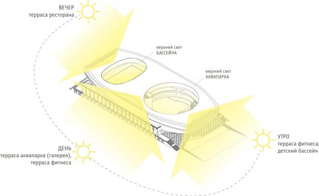 Ориентация по сторонам света / Концепция реконструкции бассейна «Лужники», ДНК аг.