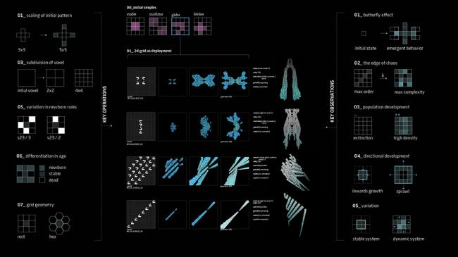 Материал 2-го воркшопа 3-го триместра AA DRL «Клеточные автоматы». Предоставлено Дмитрием Аранчием