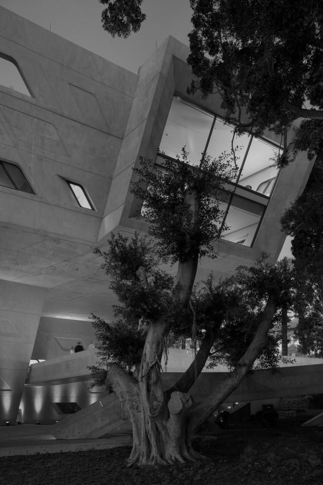 Институт политики и международных отношений имени Иссама Фареса © Luke Hayes