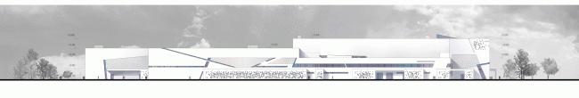 Спортивный комплекс хоккейного клуба СКА. Фасад. Проект, 2012