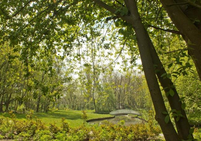 BOOM. Проект Living Daylights: парк на севере Роттердама