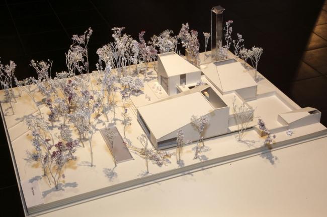 Специальная премия. Henning Larsen Architects