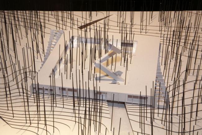 Проект «Лес внутри»