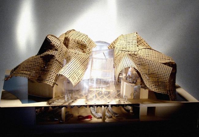 Винодельня Холл. Макет ©  Gehry Partners