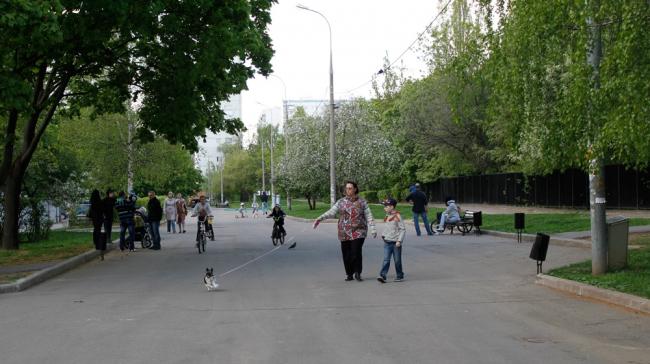 Бульвар в Тропарево до начала «благоустройства»