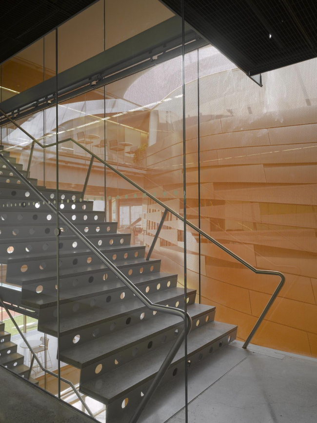 Корпус Билла и Мелинды Гейтс Корнельского университета © Roland Halbe. Фото с сайта morphopedia.com
