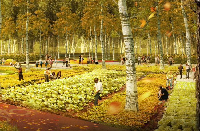 """Third place. """"Vremya Chaya"""" (""""Tea Time"""") Project. Authors: Turenscape (China), Strelka (Russia), MIX Design Studio, AECOM LLC (Russia)"""