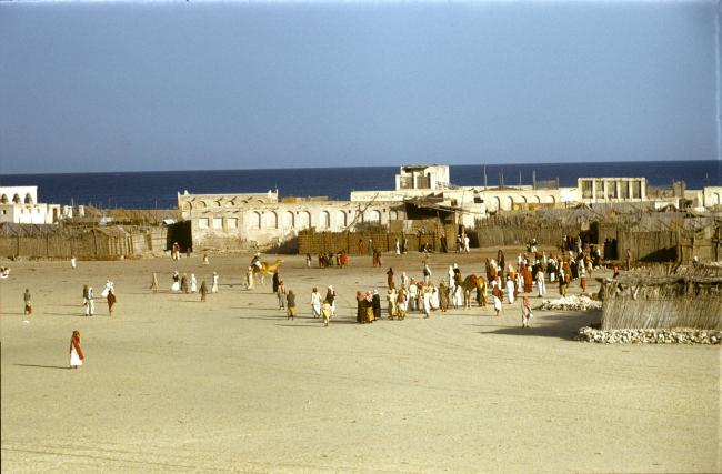 Финишная черта скачек на верблюдах в Дубае. 1950-е годы. Фото: Ronald Codral. Предоставлено: Codrai Gulf Collection - Abu Dhabi Tourism and Culture Authority