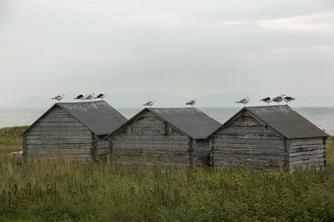 Вардё. Фото © NAF / Øystein Nermo