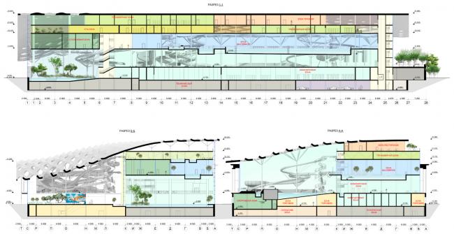 Разрезы 1-1, 2-2. Концепция реконструкции бассейна «Лужники» © Arch Group