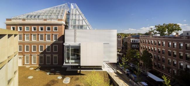 Музеи искусств Гарвардского университета – реконструкция. Фото: Nic Lehoux