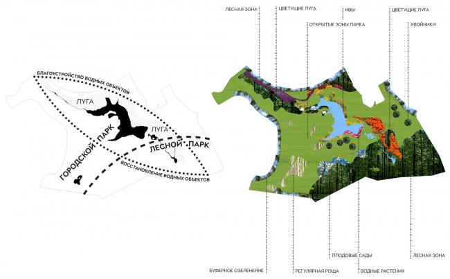 "Typology of landscaping the park territory. Concept of the landscape development of ""Mitino"" Park. Landscape design studio Arteza © Arteza"