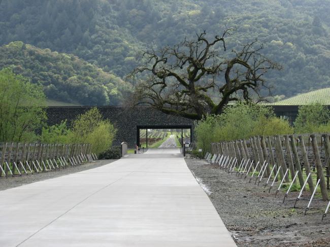 Винодельня «Доминус» в долине Напа. Фото: Brandon Shigeta via flickr. com. Лицензия Creative Commons