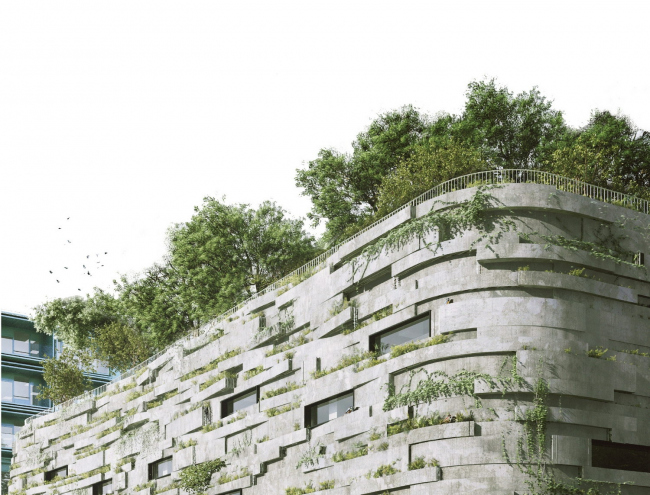 Начальная школа наук и биоразнообразия. «Эволюция» озеленения © Chartier Dalix architectes