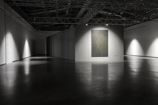 Выставка Яна Ванрита «Теряя лицо». Фото: Данила Ремизов