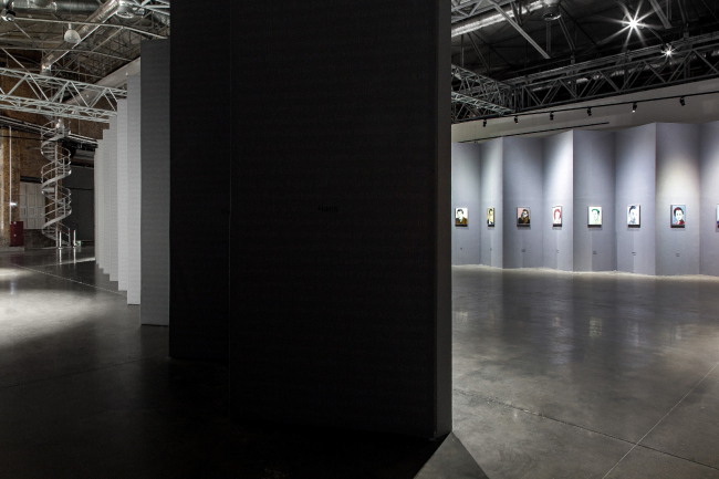 "The exhibition ""Losing Face"" by Jan Vanriet. Photo: Danila Remizov"