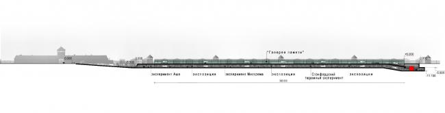 Мемориальный комплекс Освенцим.Разрез © Arch group