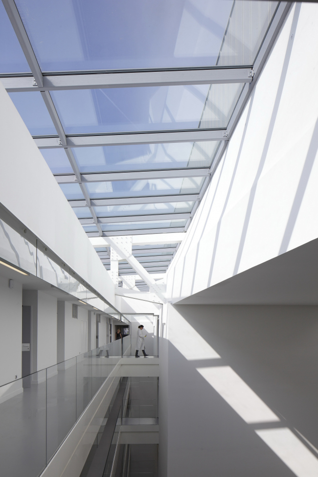 Институт генетических болезней Imagine больницы Неккер. Фото: Patrick H. Müller