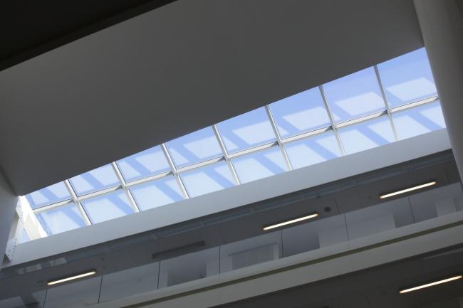 Институт Институт генетических болезней Imagine больницы Неккер. Ateliers Jean Nouvel & Valero Gadan Architectes.  Фото: Patrick H. Müller
