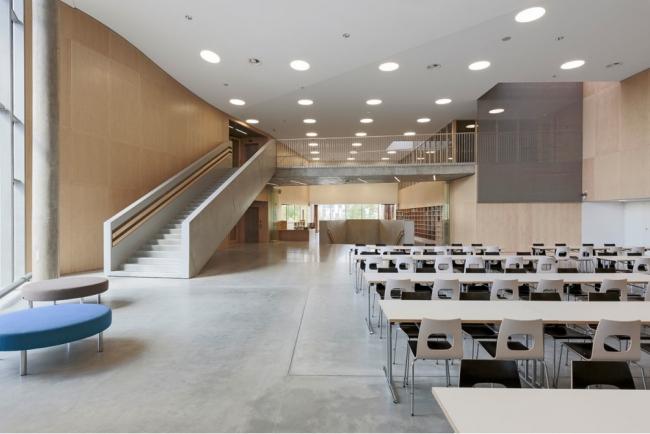 Школа Мортенсбро в Эспо. Фото: Tuomas Uusheimo
