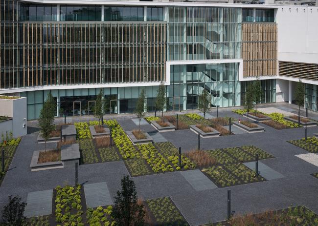 «Все в сад!» Внутренний двор – место встреч клерков в обеденный перерыв. Горизонтальные бамбуковые ламели отчетливо видны на фасаде двухэтажного здания (справа). Офисный комплекс Green Place в Милане. Фотография © Stefano Gusmeroli