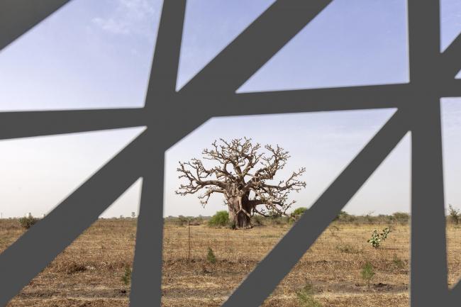 Международный конференц-центр в Дакаре © Emre Dörter