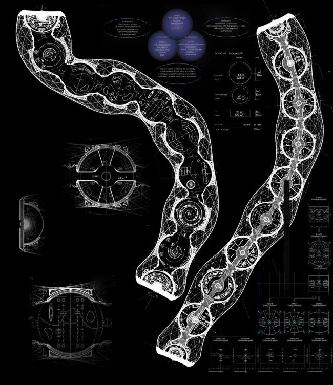 Диплом III степени. Аюна Митупова. Дипломный проект «Кинетические морфологии. Научно-исследовательская станция в экстремальных условиях». Планы  2 уровней внутренних ячеек
