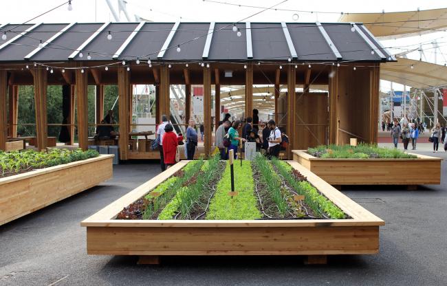 Павильоны Slow food («Медленной еды»), Herzog & de Meuron: между тремя павильонами расположены несколько огородов, на которых растет экологически чистая еда. Фотография © Юлия Тарабарина