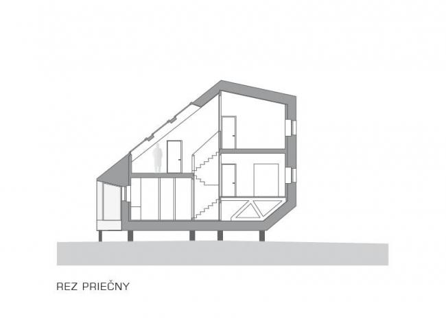 Дом в Словакии, архитекторы Oximoron. Разрез © Oximoron