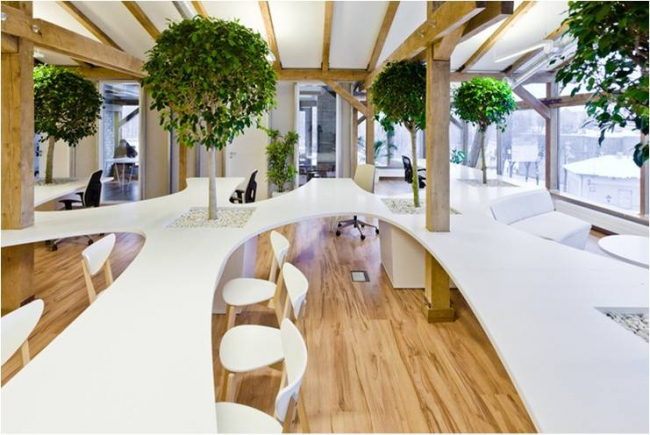 Проект «Концепция проекта эко-офиса». Автор проекта – архитектор Мария Горячева