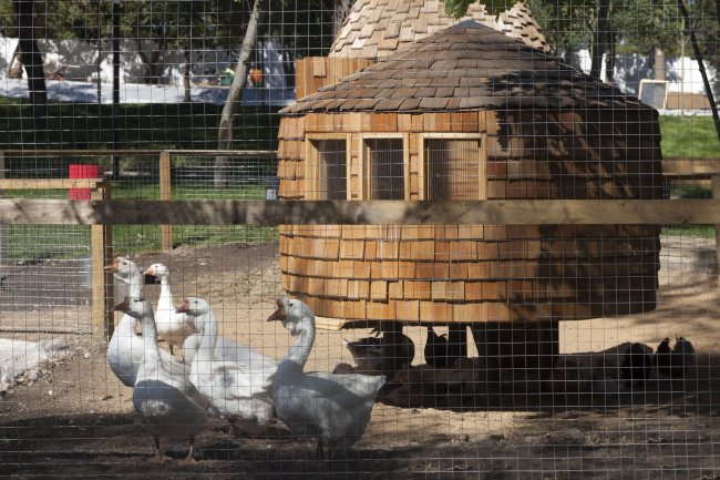 Poultry houses. The house for master classes. Urban farm at VDNKh, 1st phase. WOWhaus Bureau. Photograph © Dmitry Chebanenko