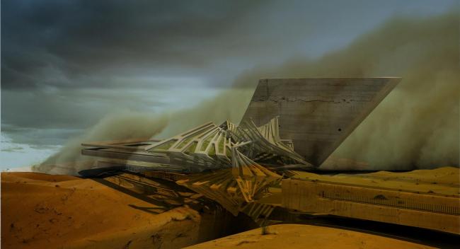 «Солнечный кластер» в пустыне Гоби © Margot Krasojević