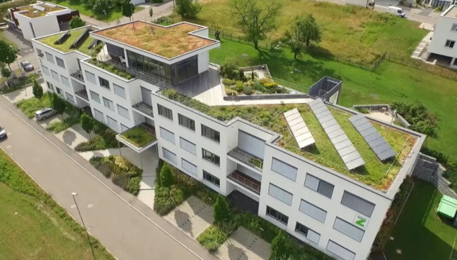 Зеленая крыша с технологией Stabilodrain SD 30. Подземный паркинг при штаб-квартире ZinCo в Нюртингене, земля Баден-Вюртемберг © ZinCo, zinco-greenroof.com