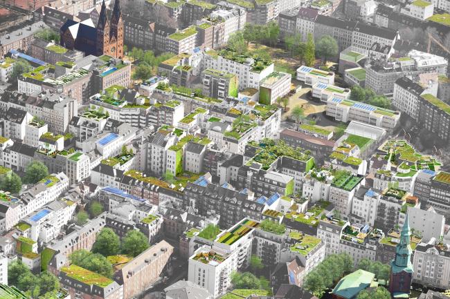 Проект озеленения городских крыш в Гамбурге © Mathias Friedel; Minitstry of Environment and Energy, BUE Hamburg