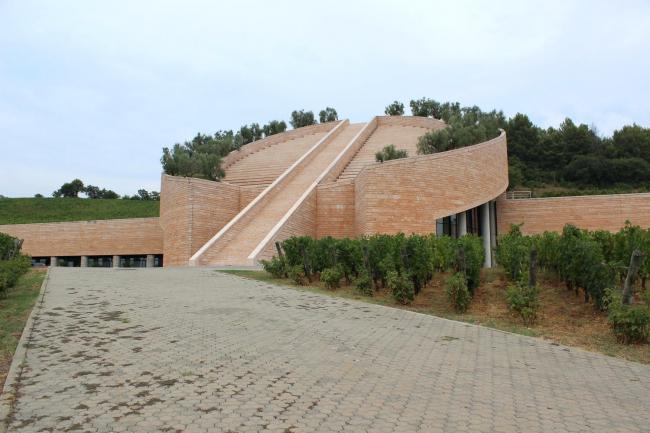 Винодельня Петра в Суверето (Италия) © Анна Вяземцева