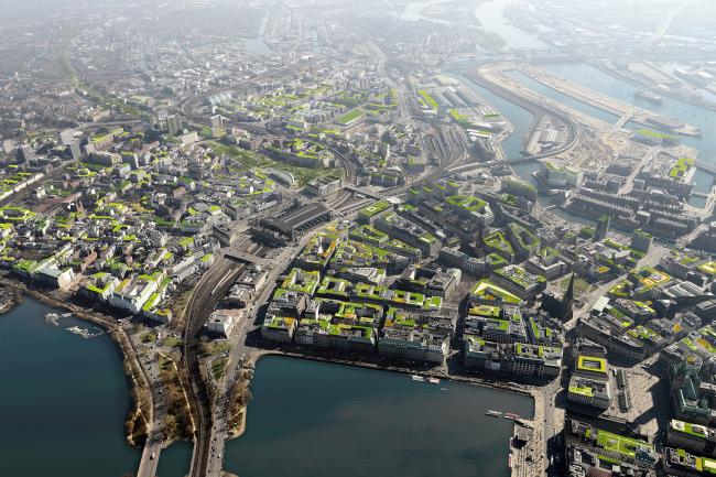 Проект озеленения городских крыш в Гамбурге (после) © Mathias Friedel; Minitstry of Environment and Energy, BUE Hamburg