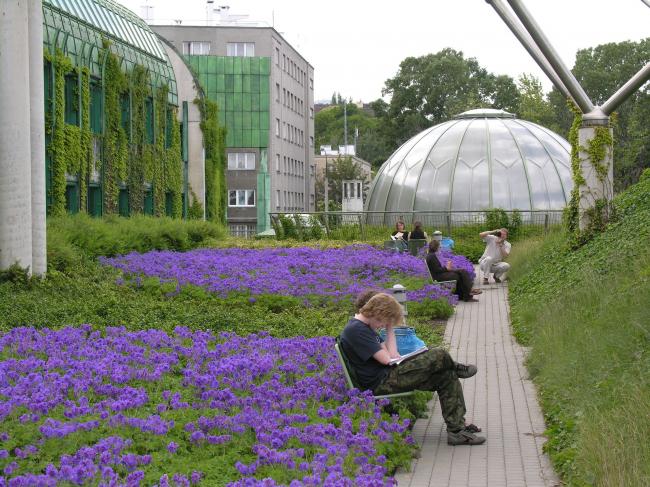 """Библиотека Варшавского университета. Сад на крыше. Постройка, 2000. Фотография © Архитектурная мастерская """"Budzynski & Badowski"""""""
