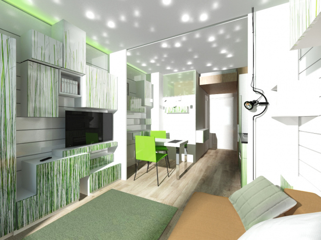"Design concept for efficiency apartments. ""Grass"" option © Arch group"