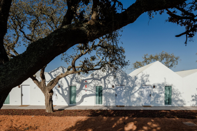 Гостиница Sobreiras – Alentejo Country Hotel © Joao Morgado – Architecture Photography