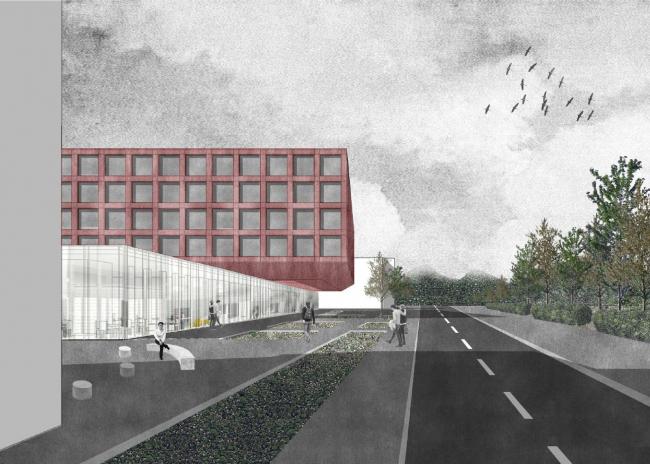 Проект Анны Пановой