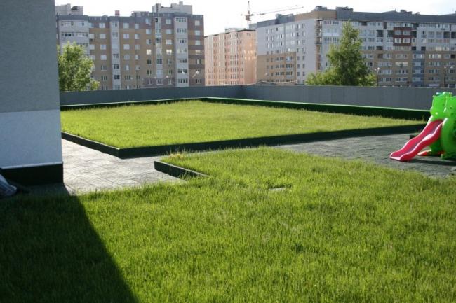 Фотография с сайта zinco.ru
