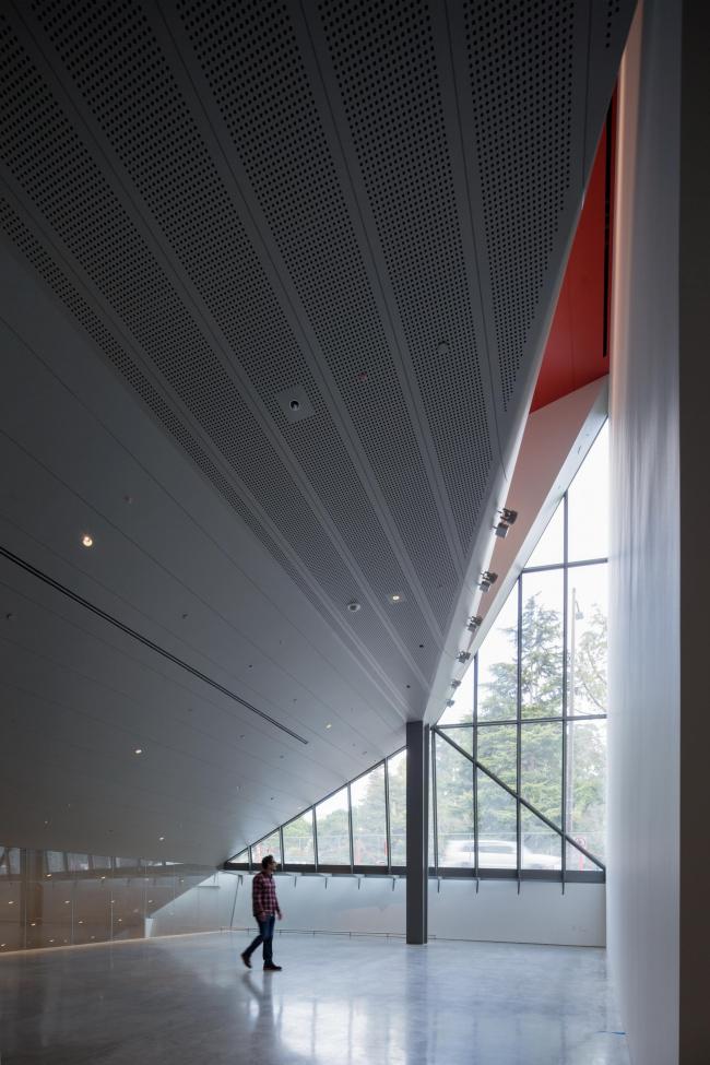 Музей искусств Беркли и Тихоокеанский киноархив – BAMPFA. Фото: Iwan Baan. Предоставлено Diller Scofidio + Renfro; EHDD; UC Berkeley Art Museum and Pacific Film Archive (BAMPFA)