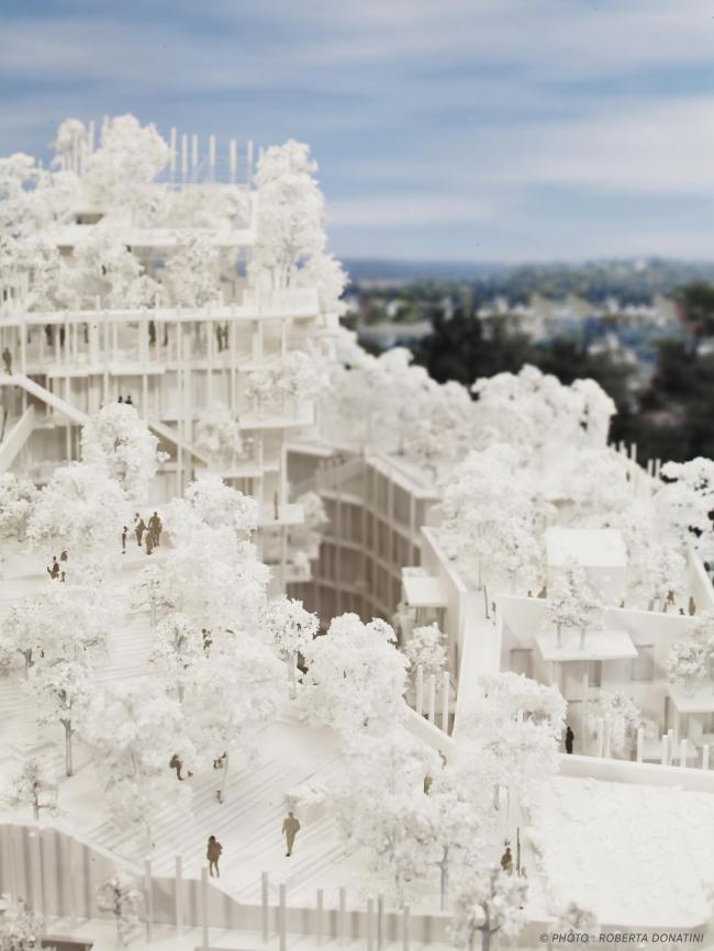 Жилой комплекс Canopia – конкурсный проект © Roberta Donatini