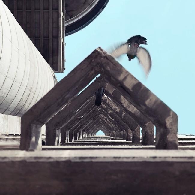 Западные ворота © Mirko Nahmijas