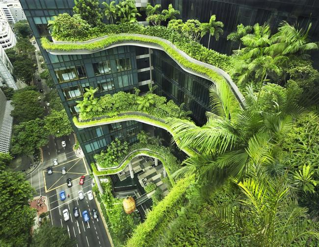 Отель Parkroyal on Pickering в Сингапуре © Patrick Bingham-Hall