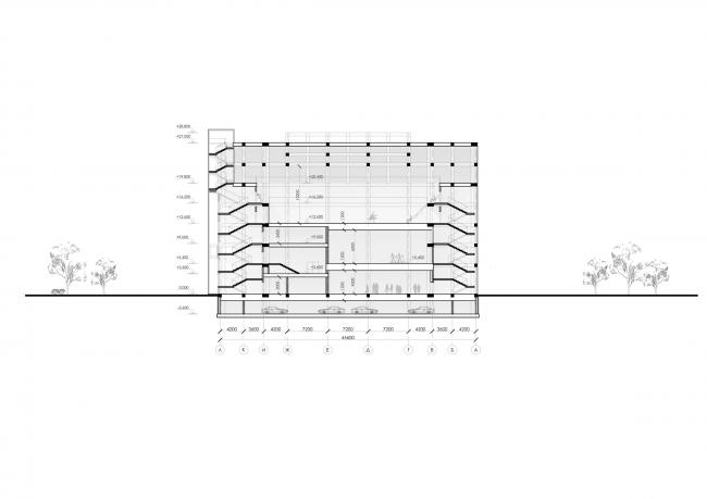 Спортивно-оздоровительный комплекс школы дзюдо. Разрез © Студия 44