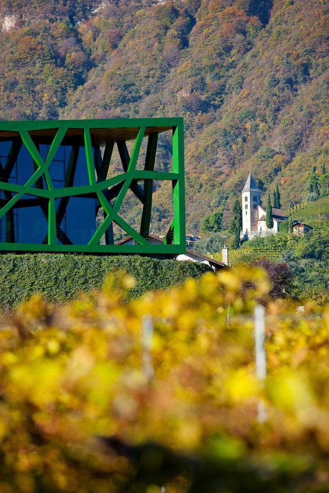 Винодельня Tramin. Архитектор Вернер Чолль © Florian Andergassen